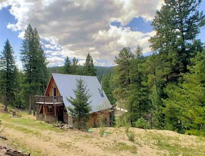 137 YOUNG CANYON RD, Cloudcroft, NM 88317 - Photo 2