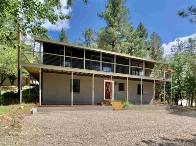 54 SHERWOOD FOREST RD, Mayhill, NM 88339 - Photo 1