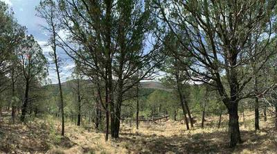 147 BELL DR, Mayhill, NM 88339 - Photo 2