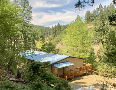21 CARRIE CAMP RD, Cloudcroft, NM 88317 - Photo 1