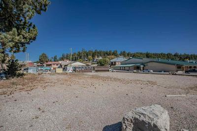 206 JAMES CANYON HWY, Cloudcroft, NM 88317 - Photo 2