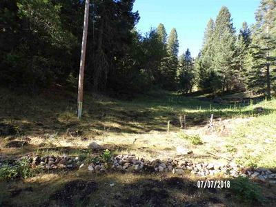 50 ELY LN, Cloudcroft, NM 88317 - Photo 1