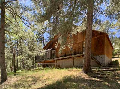 63 SHERWOOD FOREST RD, Mayhill, NM 88339 - Photo 2