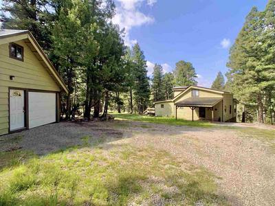 98 BIG DIPPER, Cloudcroft, NM 88317 - Photo 1