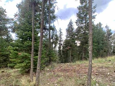 160 BIG DIPPER, Cloudcroft, NM 88317 - Photo 2