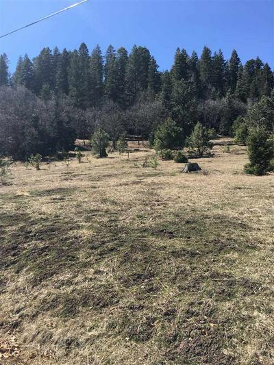 LOT # 7 BILLIE JEAN WAY, Cloudcroft, NM 88317 - Photo 1