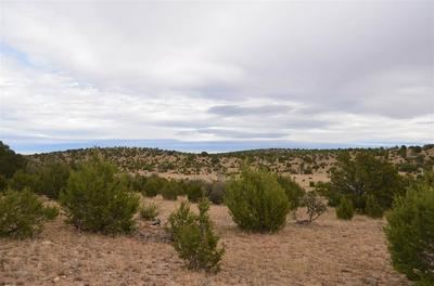 WEBER YOUNG RD, Pinon, NM 88344 - Photo 2