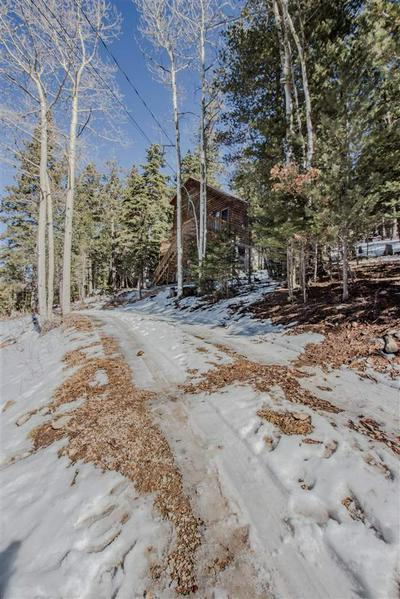 710 BALSAM LN, Cloudcroft, NM 88317 - Photo 2