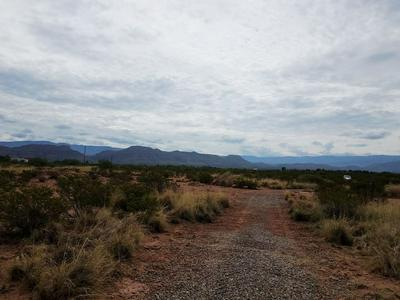 RATTLESNAKE RD, Tularosa, NM 88352 - Photo 1