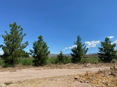 40 BACA FARMS RD, Tularosa, NM 88352 - Photo 2