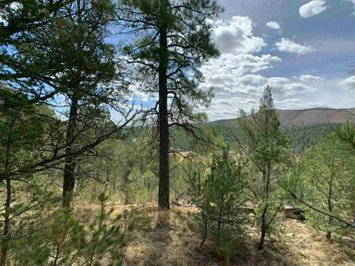 147 BELL DR, Mayhill, NM 88339 - Photo 1
