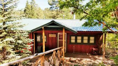 901 PANTHER AVE, Cloudcroft, NM 88317 - Photo 2