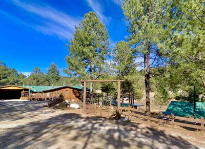 13 FRIAR TUCK, Mayhill, NM 88339 - Photo 2