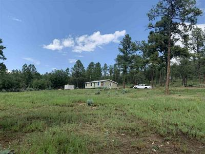 545 WALKER CANYON RD, Mayhill, NM 88339 - Photo 2