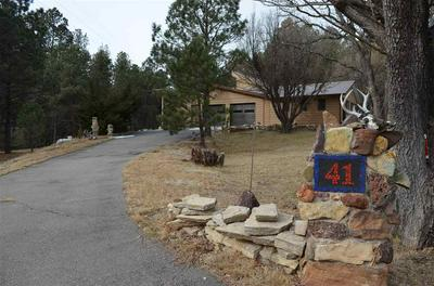 41 CLOUD COUNTRY DR, Mayhill, NM 88339 - Photo 2
