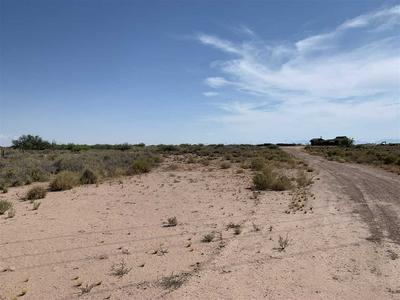 302 TULIE GATE RD, Tularosa, NM 88352 - Photo 2