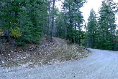 90 ELY LN, Cloudcroft, NM 88317 - Photo 1