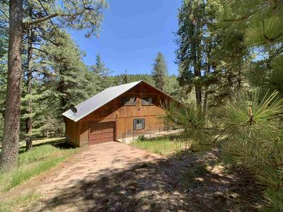 63 SHERWOOD FOREST RD, Mayhill, NM 88339 - Photo 1