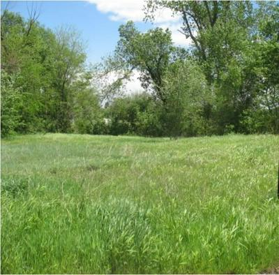 VACANT LOT ON PRINCETON, Seminole, OK 74868 - Photo 1