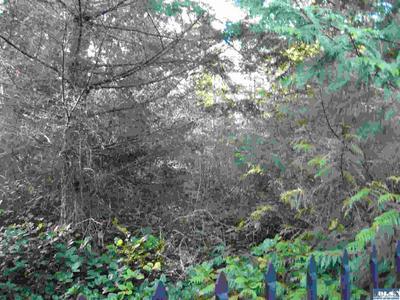 WHITETAIL LANE, Sequim, WA 98382 - Photo 2