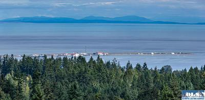 9999 MCCLURE VIEW RD, Port Angeles, WA 98363 - Photo 2