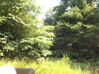 LOT 2 MOUNTAIN VIEW RD, Falls of Rough, KY 40119 - Photo 2