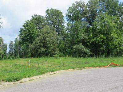 3173 BRIDGEWATER CV, Owensboro, KY 42303 - Photo 1