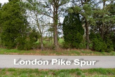 0 LONDON PIKE SPUR, Philpot, KY 42366 - Photo 2