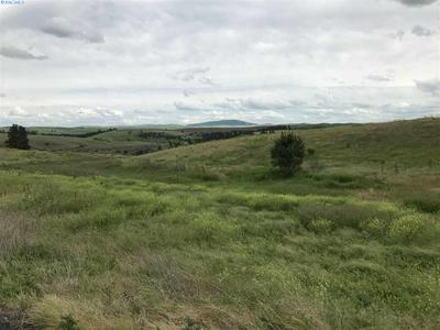 LOT 9 RED TAIL RIDGE, Colfax, WA 99111 - Photo 1
