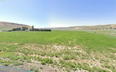 LOT 1 NKA GOOSE GAP ROAD, BENTON CITY, WA 99320 - Photo 1