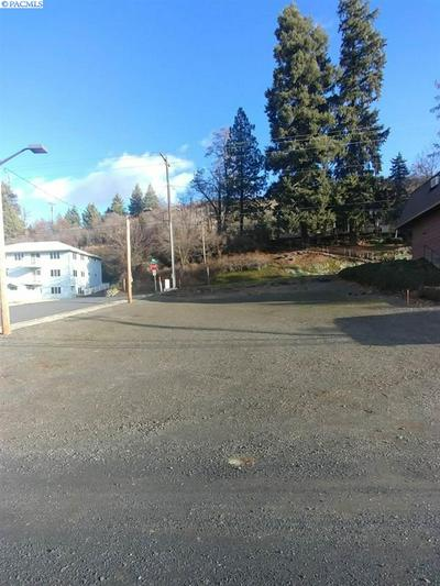 106 E STEVENS ST, COLFAX, WA 99111 - Photo 2