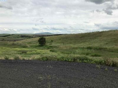 LOT 9 RED TAIL RIDGE, Colfax, WA 99111 - Photo 2