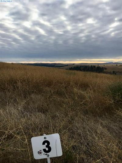 RED TAIL RIDGE LOT 3, Colfax, WA 99111 - Photo 2