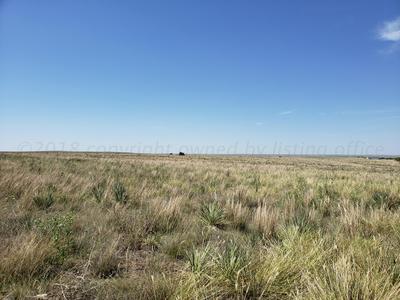 I-40 FRONTAGE ROAD, Alanreed, TX 79002 - Photo 2