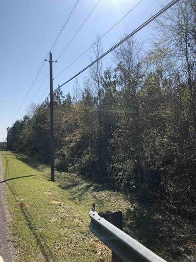 TEDDER RD, CENTURY, FL 32535 - Photo 1