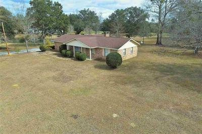 36180 STATE HIGHWAY 59, STAPLETON, AL 36578 - Photo 2