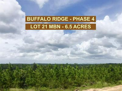 LOT 21 MBN MOLINO BRIDGE RD, PACE, FL 32571 - Photo 1