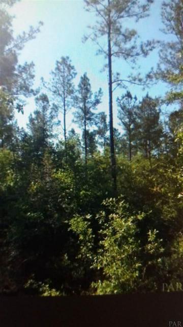 2800 BLOCK N CENTURY BLVD, MCDAVID, FL 32568 - Photo 1