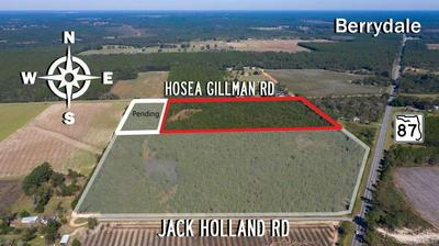0 HOSEA GILLMAN RD, MILTON, FL 32570 - Photo 2