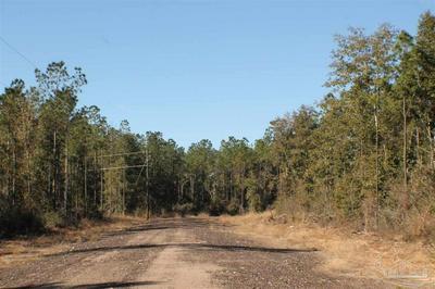 LOT 9 FOREST HILLS DR, MILTON, FL 32570 - Photo 2