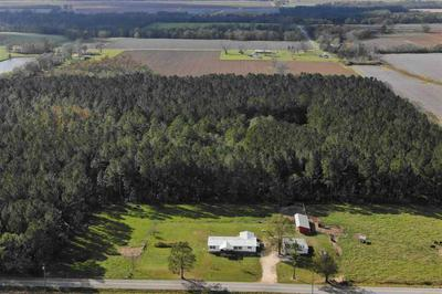 6923 MORTON RD, CENTURY, FL 32535 - Photo 2