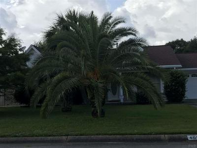 4056 SHOREWOOD DR, PENSACOLA, FL 32507 - Photo 2