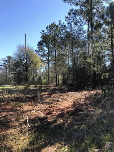 4 WHISPERING PINE RD, BREWTON, AL 36426 - Photo 1