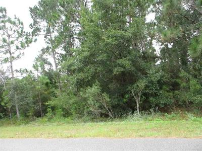 3390 CENTURY BLVD, MOLINO, FL 32568 - Photo 1