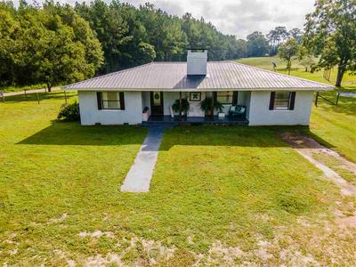 9788 CHUMUCKLA SPRINGS RD, JAY, FL 32565 - Photo 1