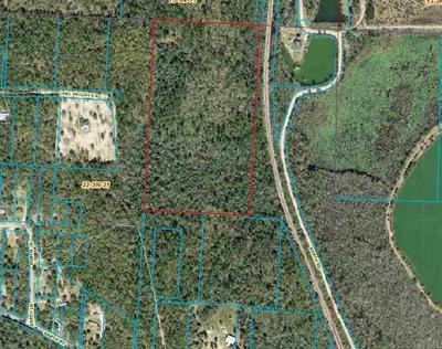 600 BARTH RD, MOLINO, FL 32577 - Photo 2