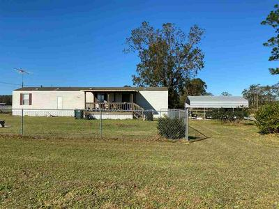3919 SOLLIE BRADLEY LN, JAY, FL 32565 - Photo 1