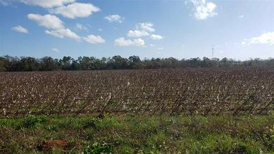 3675 HAZEL GODWIN RD, JAY, FL 32565 - Photo 1