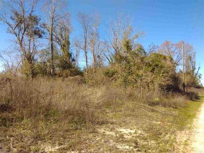 3161 WALLACE RD, BREWTON, AL 36426 - Photo 2