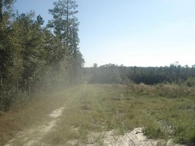 00 SENTERFITT RD, LAUREL HILL, FL 32567 - Photo 2